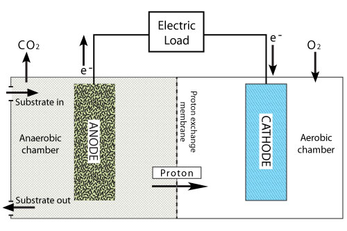 Biosampling robot